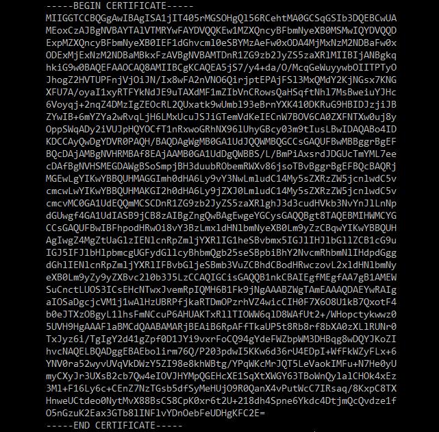 Exemplo do conteúdo de um arquivo de certificado SSL